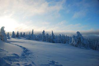 Лапландия фото– Зима в Лапландии