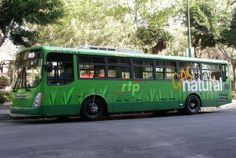 Мехико фото– городской автобус