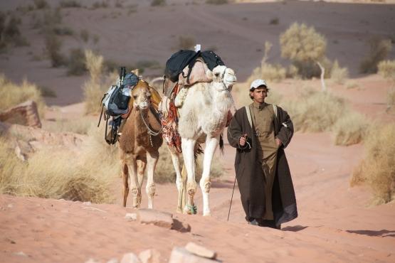 Кочевники Иордании практически не поменяли образ жизни за последние века