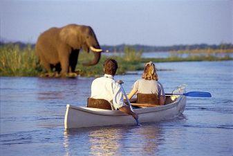Замбия фото – Речной сафари тур по Замбези