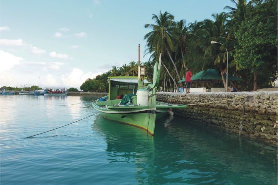 Атолл Баа фото – Лодка дхони ожидает туристов