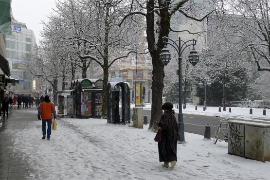Зимний день на Королевской аллее