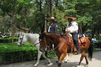 Конная полиция в парке