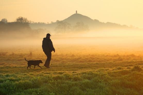 Прогулка ранним утром
