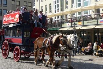 Конная повозка в центре Дрездена
