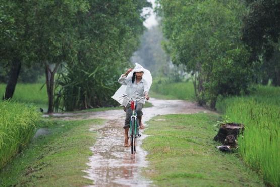 Дождь в Камбодже