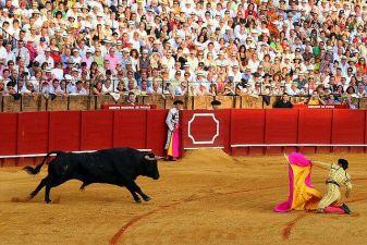 Испания фото– коррида