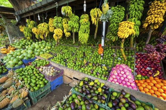 Тропические фрукты нужно обязательно мыть перед употреблением