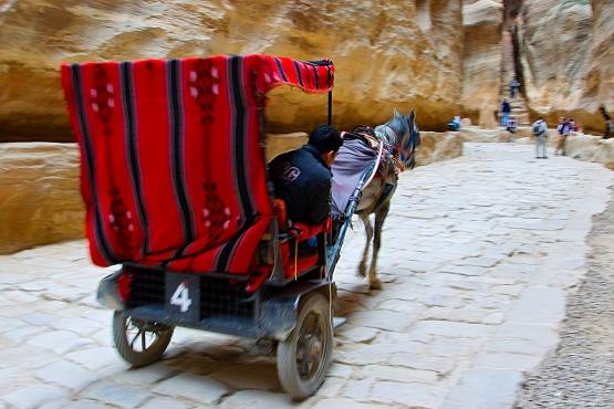 Местный транспорт в Петре