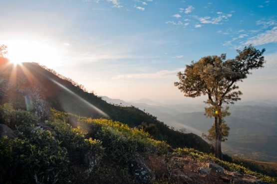 Ясный августовский день в горах