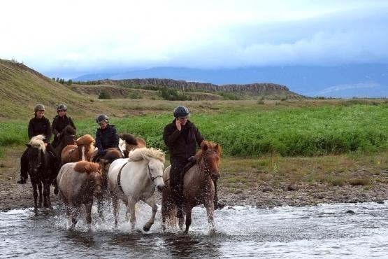 Турист говорит по телефону во время конной экскурсии
