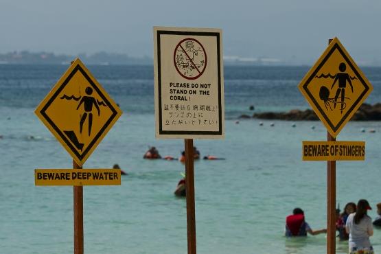Предупреждающие таблички на одном из пляжей Борнео
