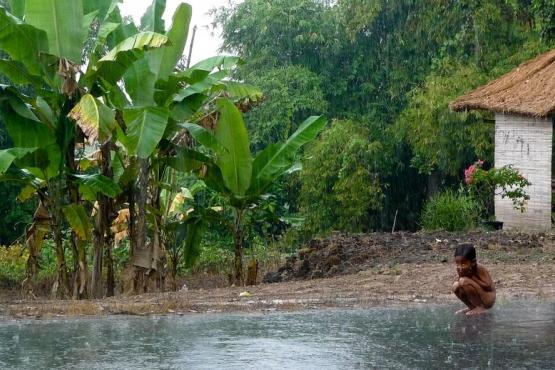 Тропический дождь в январе