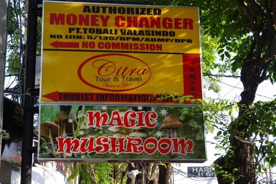Галюциногенные грибы, в отличае от других наркотиков, вполне легальны в Индонезии