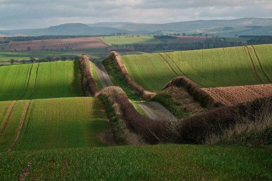 Сельские дороги в Шотландии