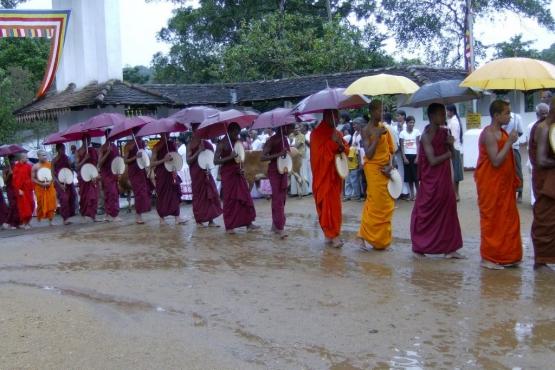 Мусонные дожди вносят свои коррективы в облик монахов