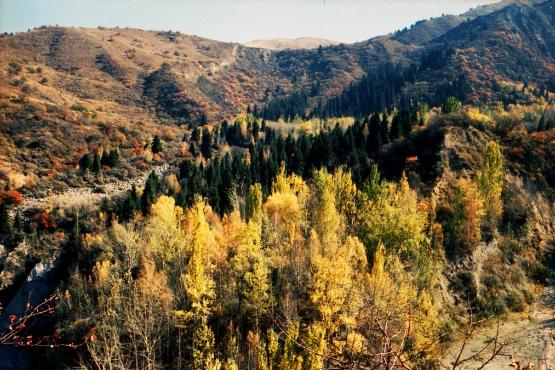 Осень в окрестностях Алма-Аты